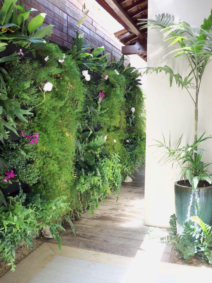 jardim vertical recife : jardim vertical recife:Jardim Vertical